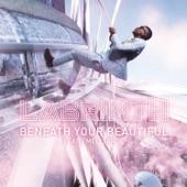 Beneath Your Beautiful (feat. Emeli Sandé) - Single