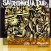 Dub For Straights (1993 Sessions), Salmonella Dub