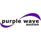 Purple Wave's Auction Podcast