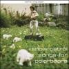 Songs for Polarbears, Snow Patrol