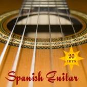 20 Hits Spanish Guitar