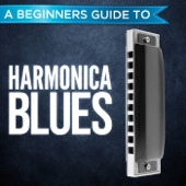 A Beginners Guide to: Harmonica Blues