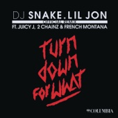 Turn Down for What (feat. Juicy J, 2 Chainz & French Montana) [Remix] - Single cover art