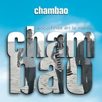Endorfinas en la Mente - Chambao