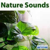 [Download] Ocean Sounds MP3