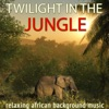 Twilight in the Jungle. Relaxing African Background Music, DJ Donovan