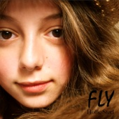 Fly - Hollie Steel