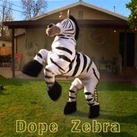 Dope zebra rhett & link sheet music download free in pdf or midi.