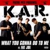What You Gonna Do to Me (feat. Fat Joe) - Single, K.A.R.