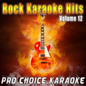 Can't Stop (Karaoke Version) [Originally Performed By the Red Hot Chili Peppers]