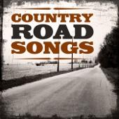Highway of Life - Billy Joe Shaver
