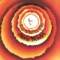 Stevie Wonder Blowin' in the Wind