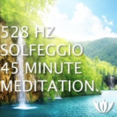 528 Hz Solfeggio (45 Minute Meditation)