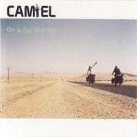 CAMIEL - Last Days Of Summer
