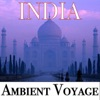 Ambient Voyage: India, Fly Project