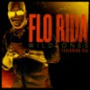 Flo Rida ft. Sia - Wild Ones