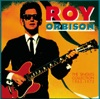 Roy Orbison: The Singles Collection 1965-1973, Roy Orbison