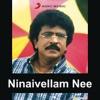 Ninaivellam Nee (Soundtrack)