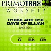 These Are the Days of Elijah - Worship Primotrax - Performance Tracks - EP