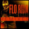 Wild Ones (feat. Sia) [Remixes] Pt. 2 - EP