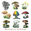 Mycology: An Anthology, The Allman Brothers Band