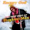 Energy God - The Very Best of Elephant Man ジャケット写真