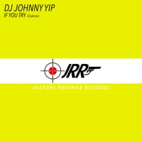JOHNNY YIP, Dj - If You Try