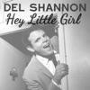 Hey Little Girl - Single, Del Shannon