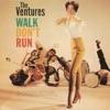Sleep Walk (The Ventures)