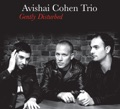 Avishai Cohen Motherless Child