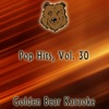 Golden Bear Karaoke - Superman  Originally Performed By Eminem