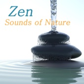 Zen Sounds of Nature: Nature Sounds Relaxation Meditation, Zen Music and Healing Sound Therapy - Zen Music Club