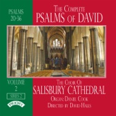 The Complete Psalms of David Volume 2 - The Choir of Salisbury Cathedral, David Halls & Daniel Cook