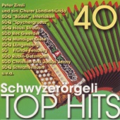 40 Schwyzerörgeli Top Hits