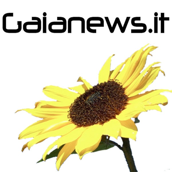 Interviste di Gaianews.it
