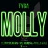 Molly (Edited Version) [feat. Wiz Khalifa, Mally Mall & Cedric Gervais] - Single