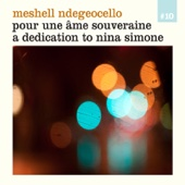 Either Way I Lose - Meshell Ndegeocello Cover Art