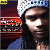 Serenade - Andru Donalds