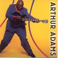 ADAMS, Arthur - The Long Haul