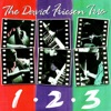 How Deep is the Ocean - David Friesen Trio