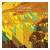 Nothing Arrived - Single, Villagers