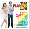 I Was Zapped By the Lucky Super Rainbow - Single ジャケット写真