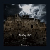 Wailing Wall 2004〜2010【Vol.2】