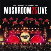 Mushroom 25 Live - Various Artists