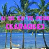 Ai Se Eu Te Pego (In the Style of Michel Teló) (Karaoke)