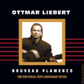 Surrender 2 Love - Ottmar Liebert