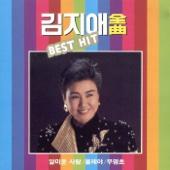 김지애 전곡 BEST HIT