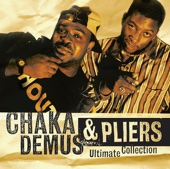 Murder She Wrote - Chaka Demus & Pliers Cover Art