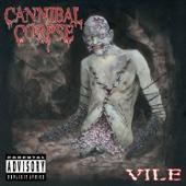 Vile cover art