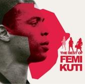 The Best of Femi Kuti - Femi Kuti